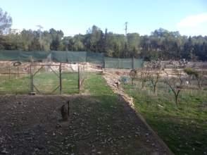 Terreno en venta en Pinar de La Perdiz Pinar de Campoverde