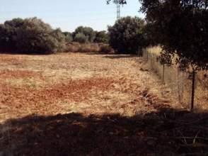 Terreno en venta en Urb La Juliana