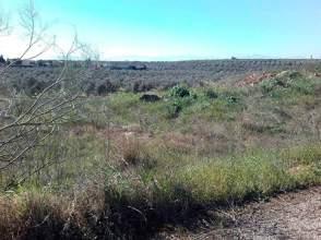 Terreno en calle Carretera de Linares A Guarroman,Urb Huerto San Ro