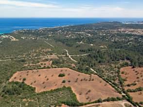 Finca rústica en Calas de Mallorca