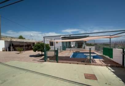 Rural Property in calle Diseminado (Polig. 11 - Parcela 465)