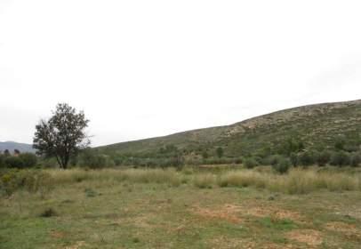 Rural Property in Macastre