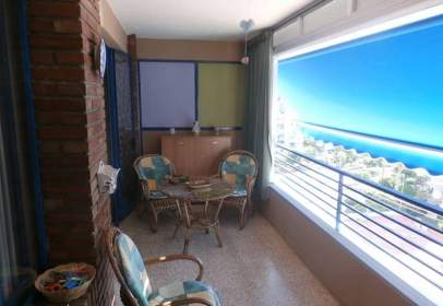 Apartment in Platja de Ponent