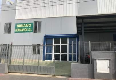 Industrial Warehouse in Nueva Torrevieja