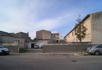 Industrial building in Carrer de Sant Miquel
