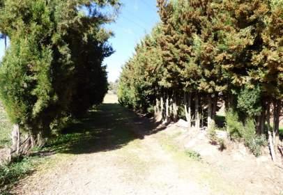 Finca rústica en Congost-Farreres-Santa Catarina