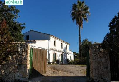 Rural Property in Puigmoltó-Viñedos-Can Macià