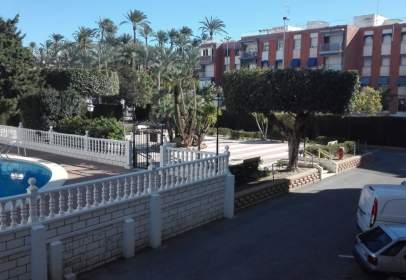 Apartament a Avinguda del Portus Illicitanus, 10