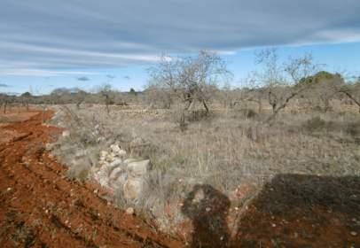 Terreny a Vilafamés