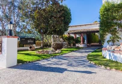Rural Property in calle Miguel de Cervantes