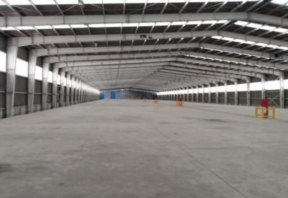 Industrial Warehouse in calle Alcantarilla Km 6