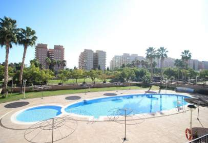 Apartment in Avenida Jardin, 46