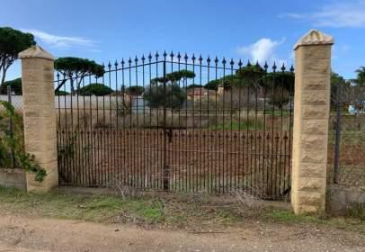 Rural Property in Las Lagunas-Campano