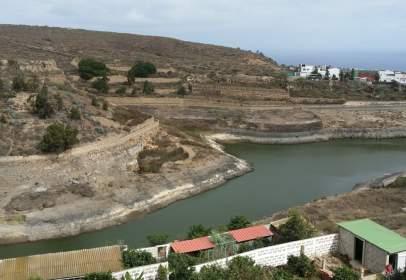 Pis a La Goleta-La Montañeta-El Cerrillo