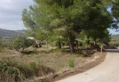 Rural Property in calle Pla de Les Vinyes