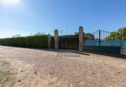 Xalet a Badajoz Capital - Carretera Olivenza Km 6