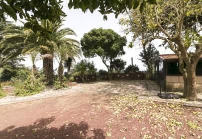 Rural Property in calle Montaña Carbonero, nº 1