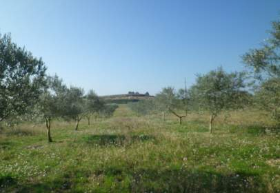 Rural Property in Castellolí