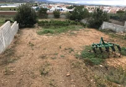 Terreny a Cerro