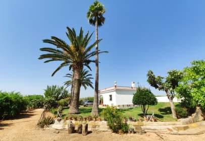 Rural Property in Polígono 3, Parcela 398, 301
