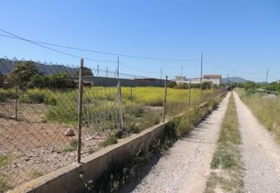 Land in Partida Collet
