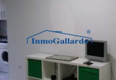 Studio in Bellavista-El Morlaco