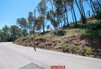 Land in calle Josep Valles I Prat, nº 29