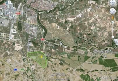 Terreny a Carretera de Madrid