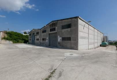 Commercial building in Can Parellada