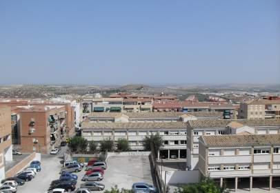 Pis a Avenida Andalucia