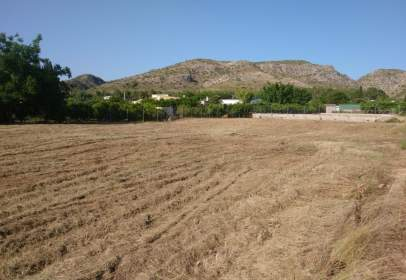 Land in Carcaixent