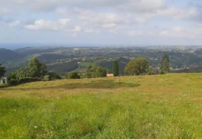Land in calle Bárcena