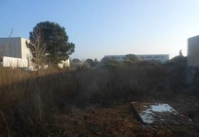 Land in Carrer de Mallorca