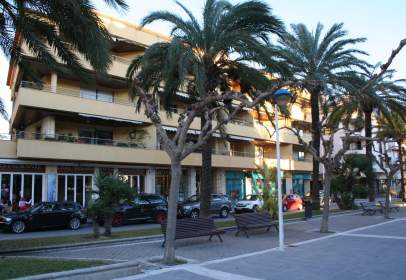 Flat in Plaza Palangre, 1