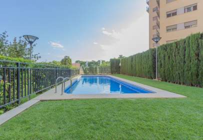 Duplex in calle Josep Alminyana I Valles, nº 4
