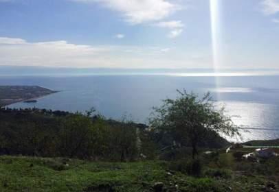 Rural Property in Monte los Almendros - El Pargo - Costa Aguilera