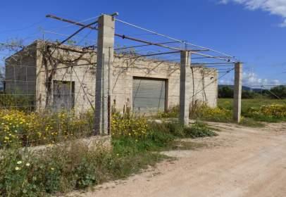 Land in Son Ferriol - Sant Jordi