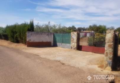 Rural Property in Los Montitos-Área Carretera de Sevilla