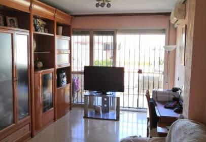 Pis a Campo de La Verdad-Sector Sur-Guadalquivir