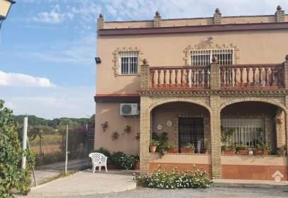 Finca rústica en Los Palacios y Villafranca