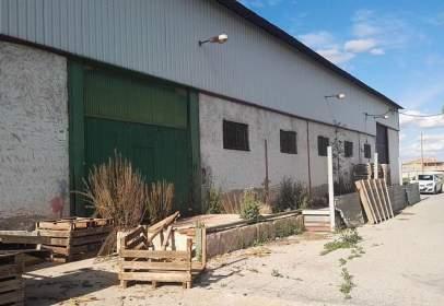 Nave industrial en Alguazas