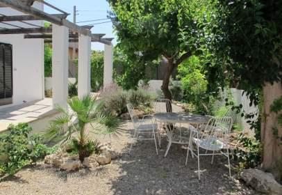 Casa en L'olivera-Amanecer