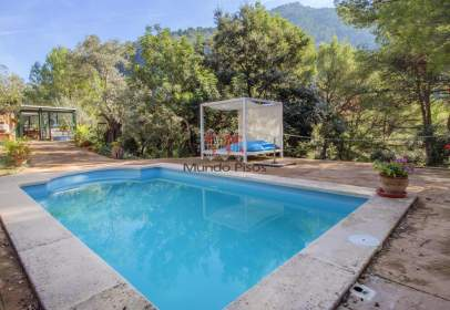 Rural Property in Soller