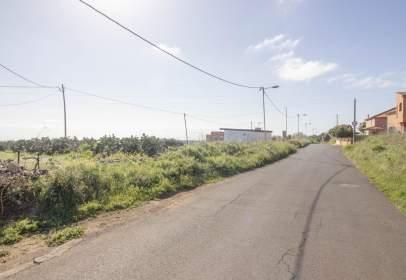 Terrenos En El Rosario Santa Cruz De Tenerife En Venta
