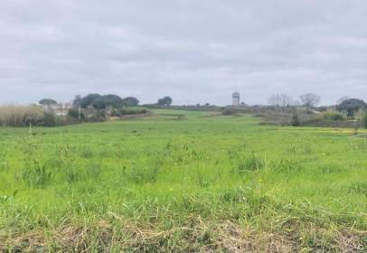 Land in Santa Maria de Getxo