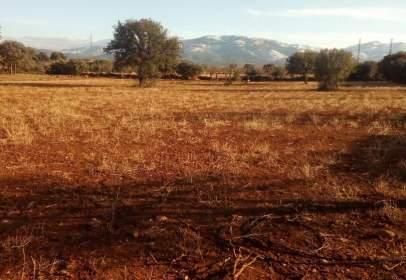 Terreno en Baza, Zona de - Freila
