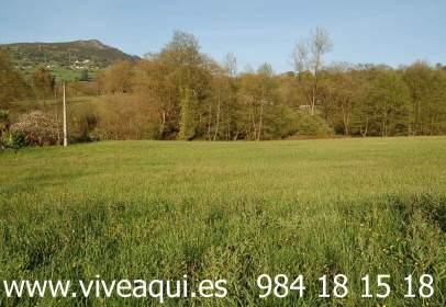 Terreno en Finca Parcelable en Dos, Edificable, Zona San Claudio, Oviedo