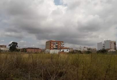 Finca rústica a calle Partida del Corralón de Montes, nº S/N
