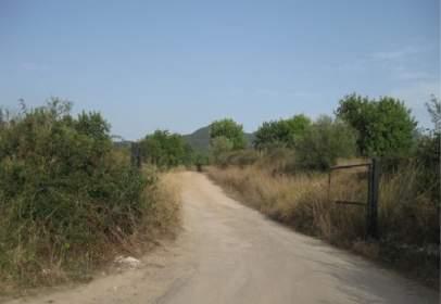 Finca rústica en calle Parte Finca Es Canyar, nº 347