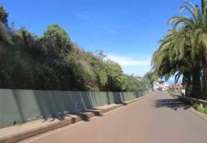 Terreno en calle Huertas del Palmar, nº S/N